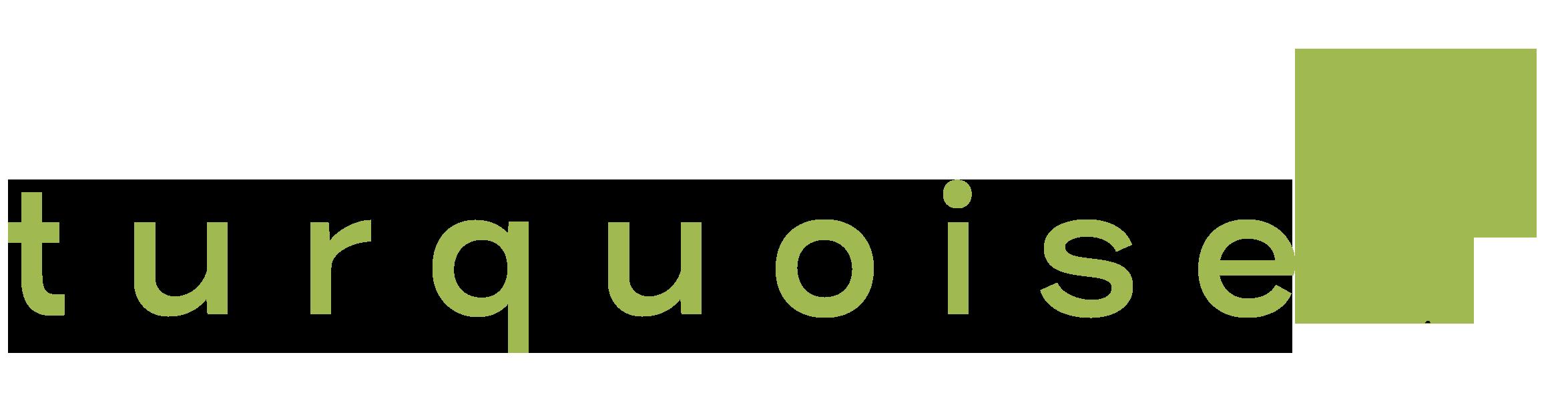 logo-turquoise-allongé